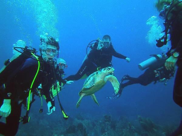 Photo from Cayman Brac Trip