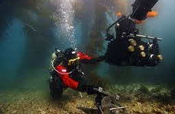 Try Scuba Diving Dry And Warm At DUI Demo Days May 31st – June 1st