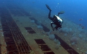 Padi Wreck Diver Specialty  A Special Offer