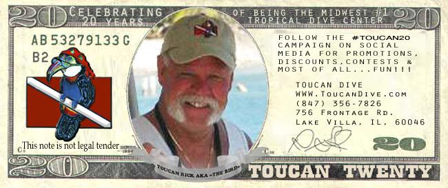 celebrate #toucan20