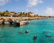 bonaire dive your share tour 2016