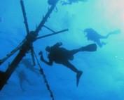 A dive assault on Nassau, Bahamas with Toucan Dive