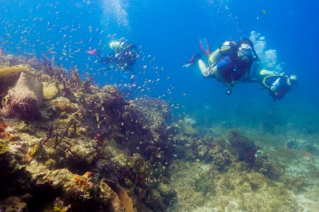 Carriacou Dive Adventure Trip 1